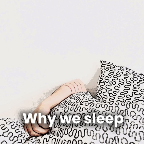 cover-لماذا ننام؟